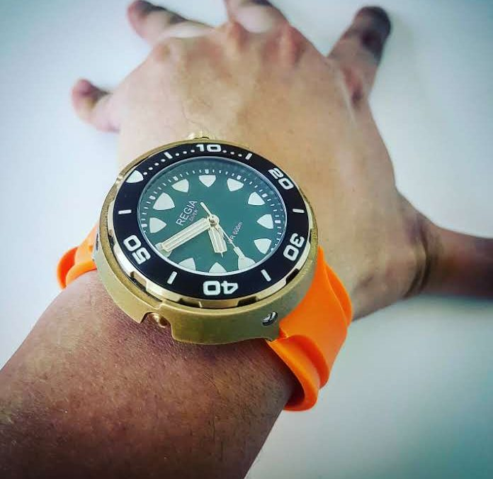 First Dip Hands-On Review for Regia Diver (code name : Armour Fish)